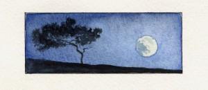 Måne og tre